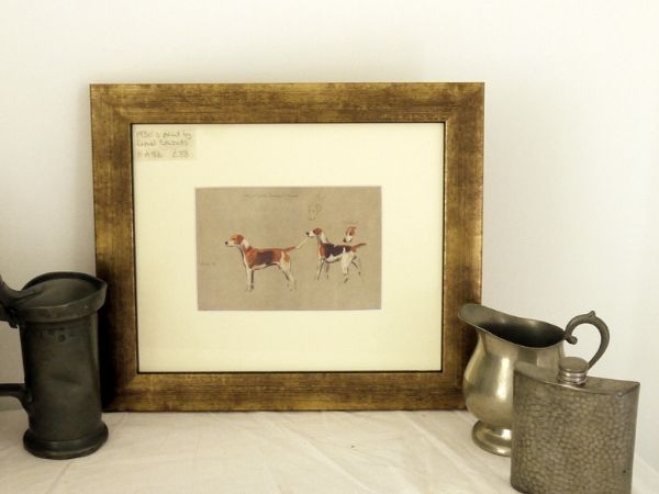 Hounds - study - H E8b -   1930's print by Lionel Edwards